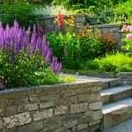 plantas de jardin en floristeria trebple,en pola de laviana en la cuenca del nalon en asturias floristerias en pola de laviana bodas ,flores para boda,flores para funerales en pola de laviana